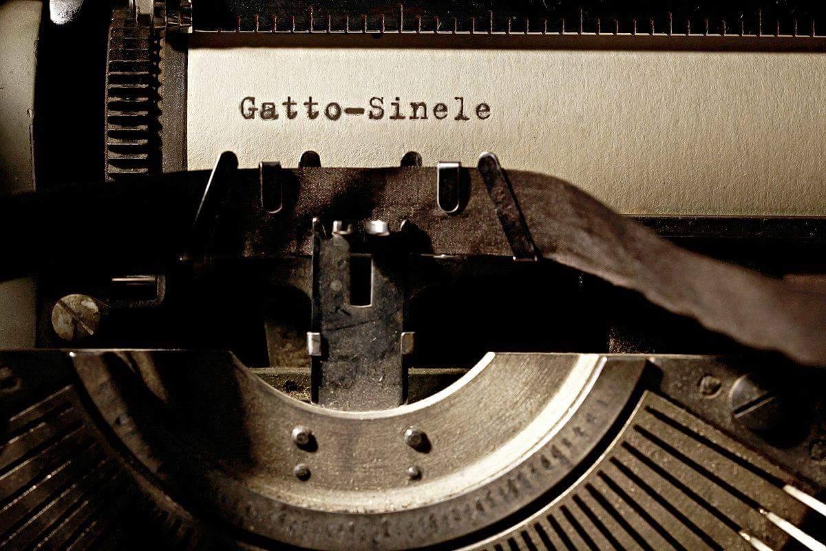 Gatto-Sinele(Videoclip)
