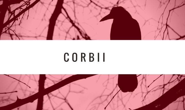 CORBII – Secvente